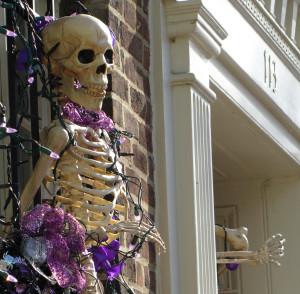Skeleton Joe
